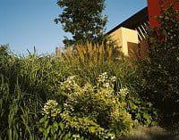 quai branly jardin 1