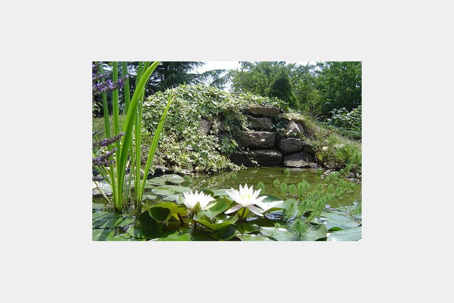 Une cascade pour agr menter un joli bassin for Agrementer un jardin