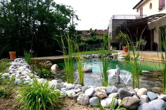 Une piscine biologique