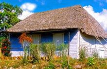 maison typique près de vinalès à cuba.