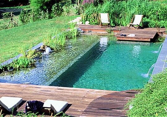 Des plantes dans la piscine for Piscine design jardin