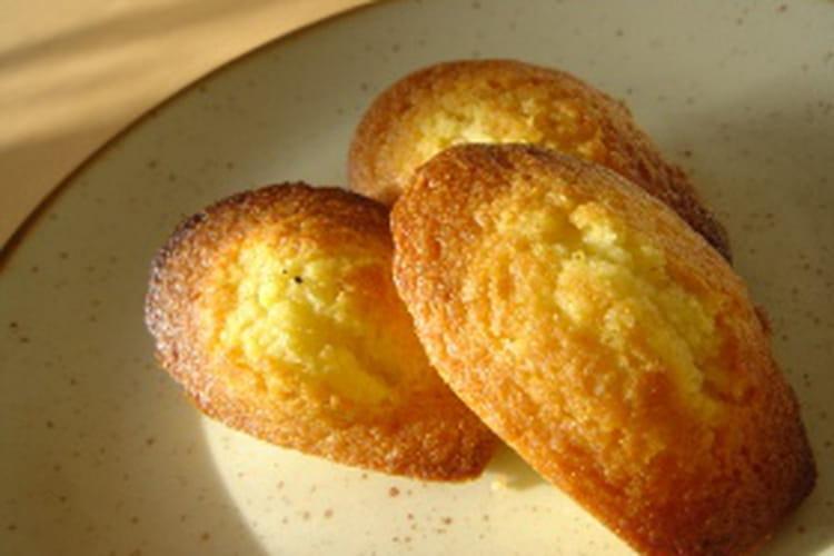 Madeleines au miel, vanille et poudre d'amandes