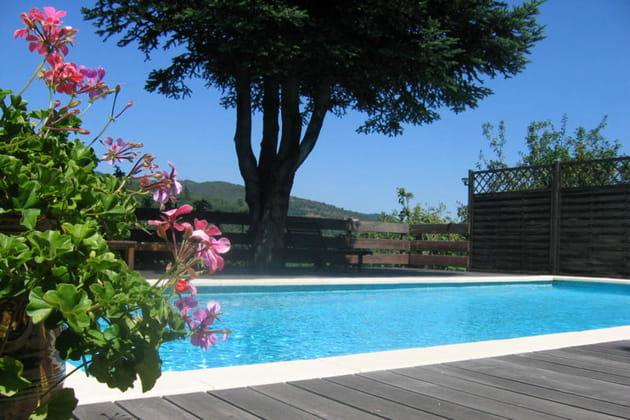 Une piscine avec terrasse en bois exotique