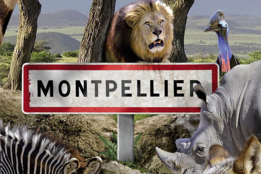 Parc zoologique de Montpellier: en plein cœur de la nature