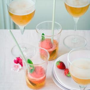 sorbet fraise et rhubarbe