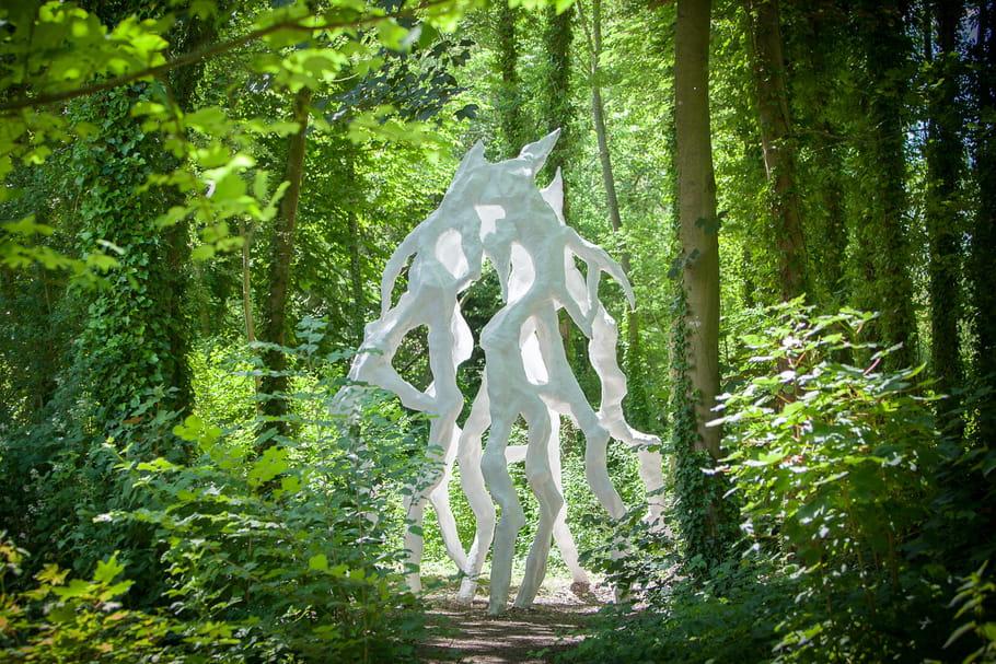 Balade artistique et botanique aux jardins flottants d'Amiens !