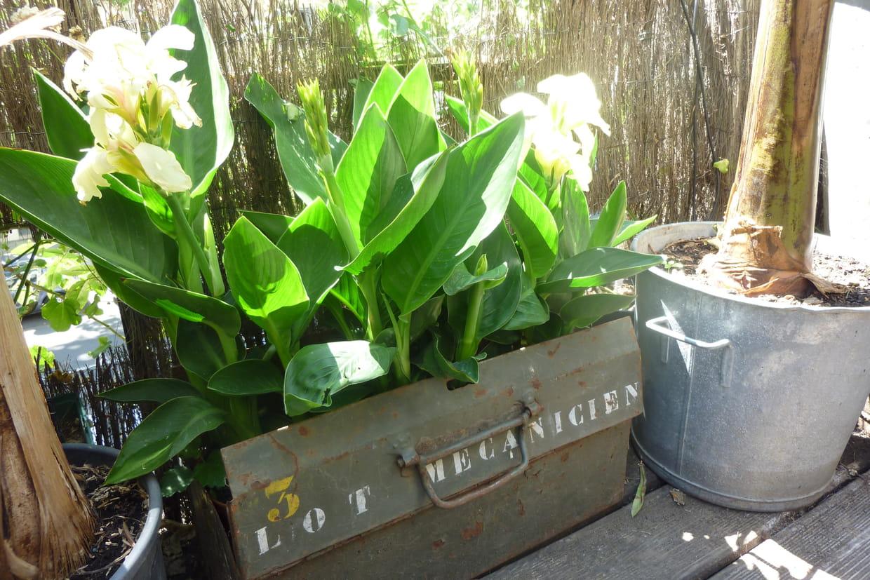Pot De Fleur Avec Des Pneus la r�cup' au jardin