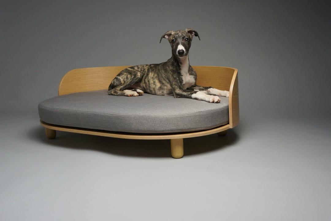 canape-pour-chien-dog-and-cat-design