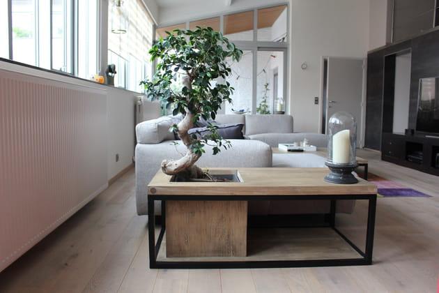 Table Bonsaï sur Faber.Place