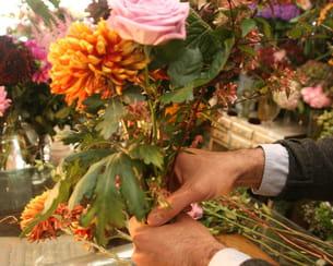 alterner les variétés de fleurs