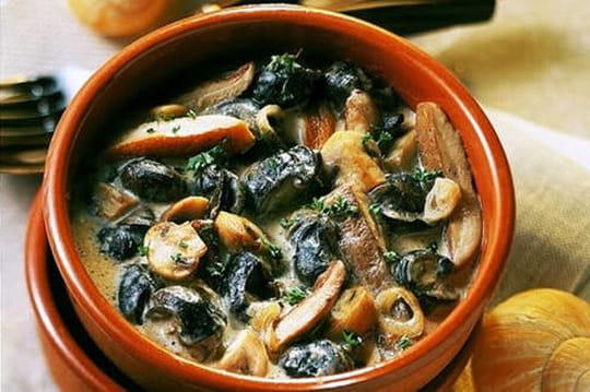15 recettes aux escargots