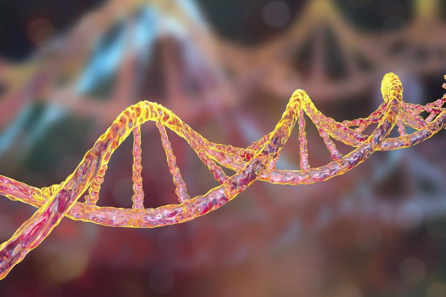Lutte contre les maladies génétiques de l'enfant: et si vous donniez?
