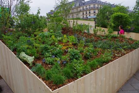 Jardin La lisière thérapeutique