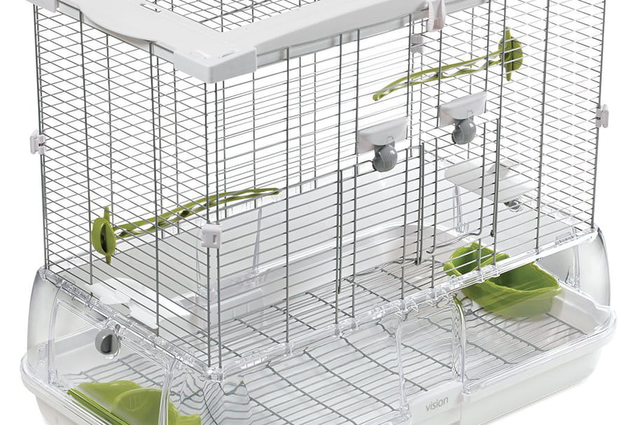 Meilleures cages pour oiseaux: notre choix