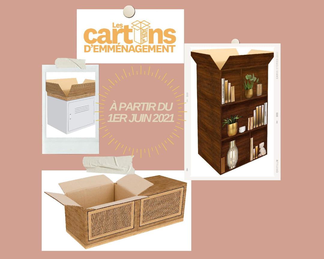 carton-emmenagement-manomano