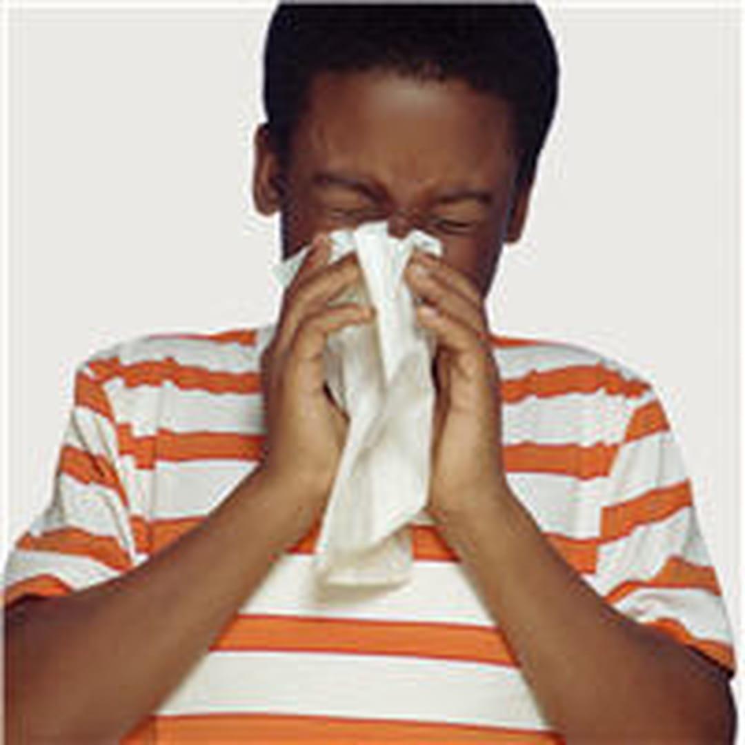 allergies rhume poussi re tout ce qui fait couler le nez. Black Bedroom Furniture Sets. Home Design Ideas