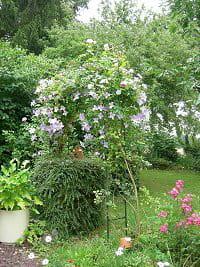 jardin de daniel bret