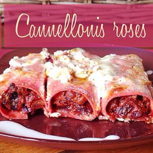 cannellonis roses au saumon, chou rouge et chèvre