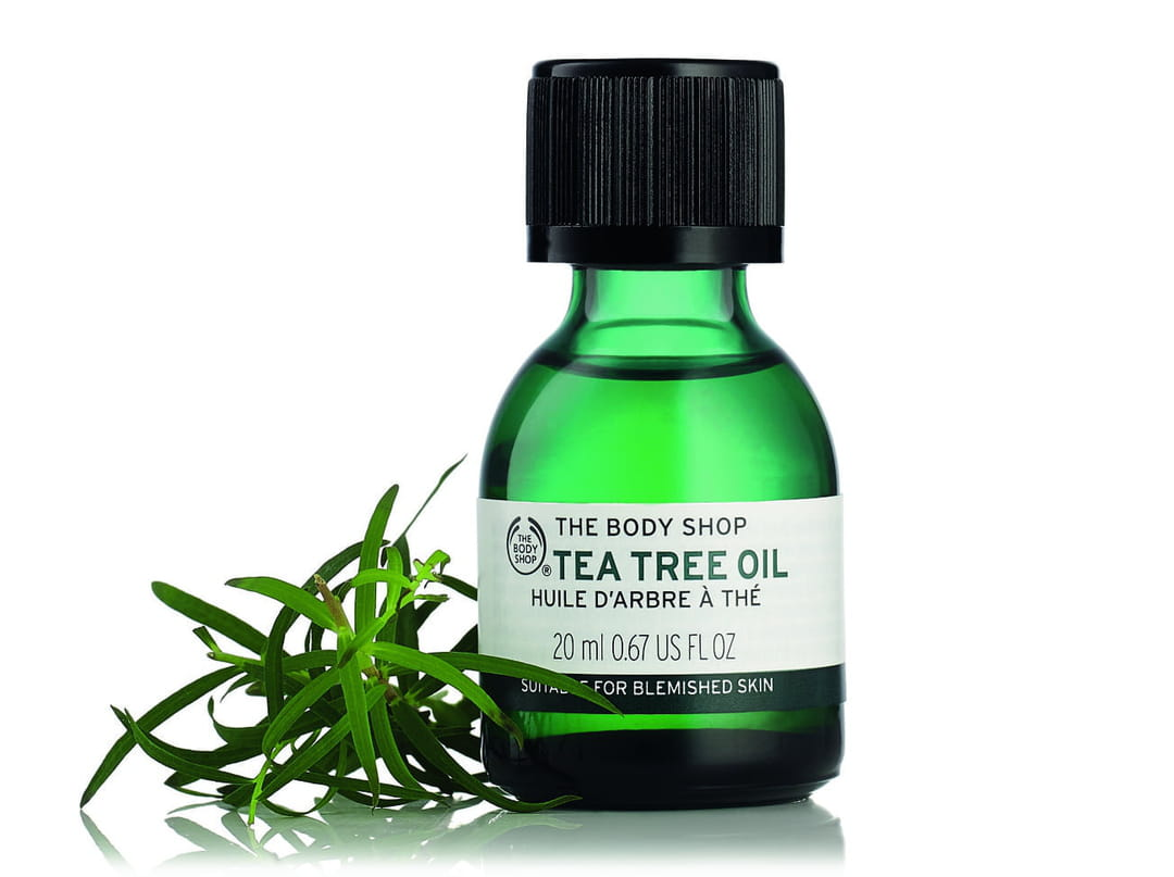 tea-tree-oil-the-the-body-shop