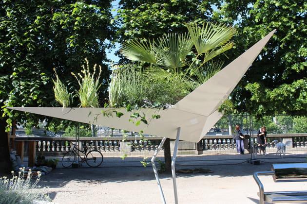 Un albatros végétalisé