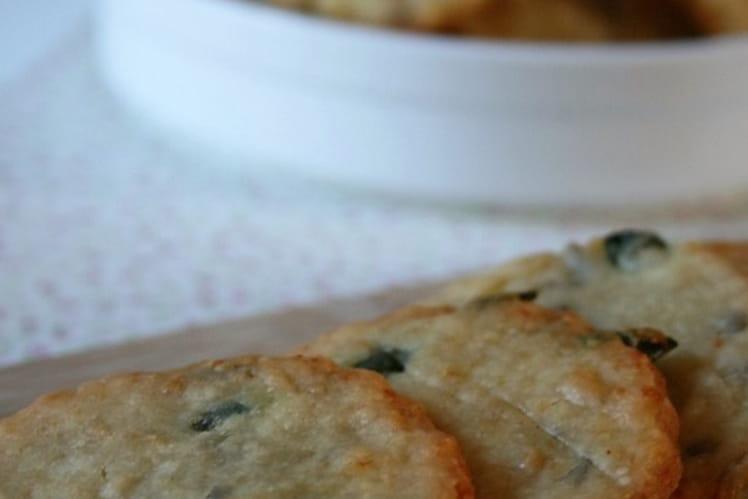 Biscuits aux graines et au parmesan Bio sans gluten ni œufs