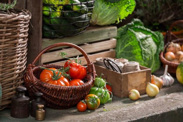 28astuces simples pour conserver vos fruits et légumes plus longtemps