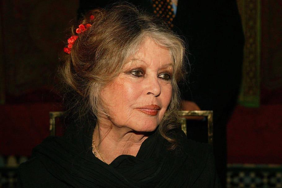 "Son mari ""mignon"", sa sœur Mijanou, son (ex) ami Alain Delon... Brigitte Bardot balance!"