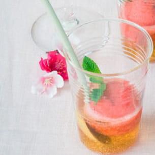 sorbet fraise et rhubarbe en trou normand