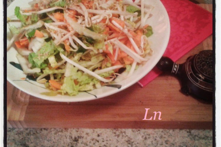 Salade de chou chinois, carottes et germes de soja