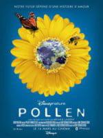 pollen affiche