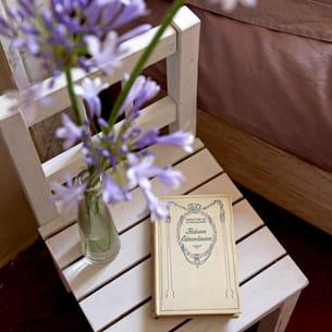 chaise en table d'appoint ou bout de canapé