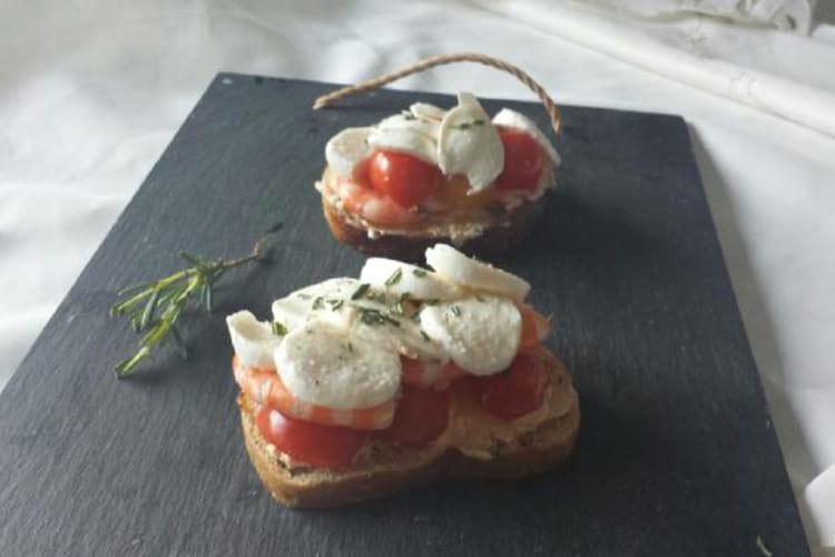 Tartine tomate-mozzarella-crevettes