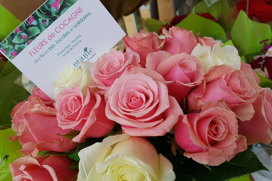 Chez Botanic, les roses se font bio pour la fête des mères
