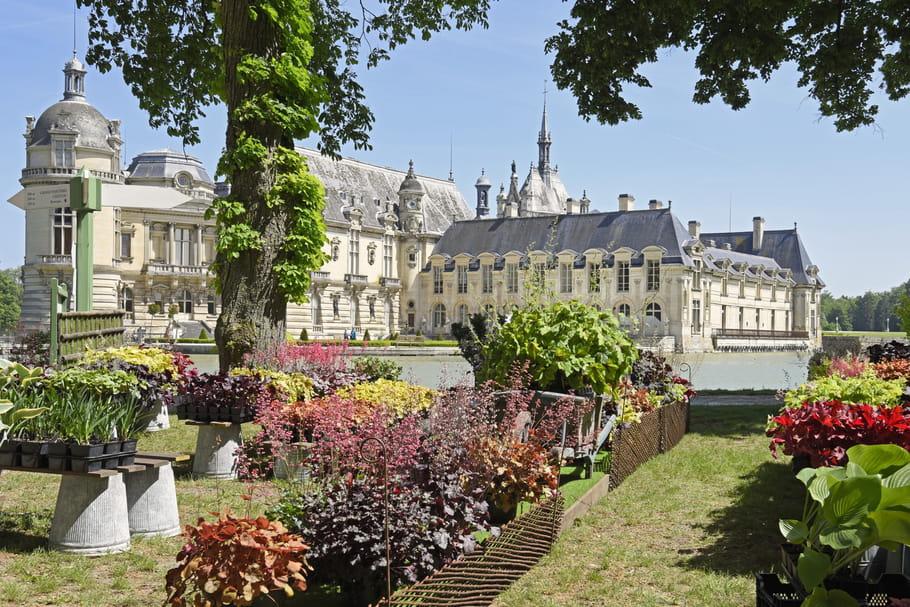 Journées des Plantes de Chantilly 2021: demandez le programme!