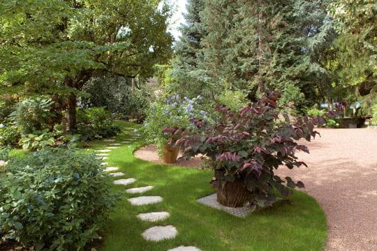 Jardin des garmier une v ritable collection for Jardin veritable