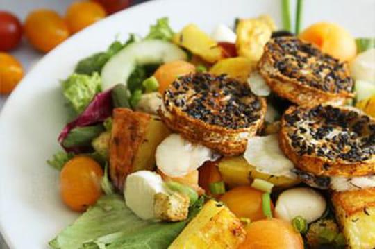 70recettes de salades de printemps