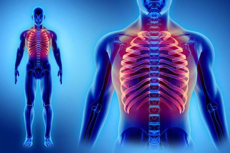 Cage thoracique: anatomie, schéma, douleurs