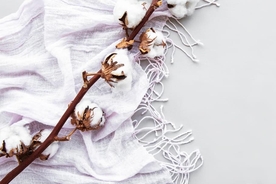 Vêtements en coton bio: définition, labels et idées reçues