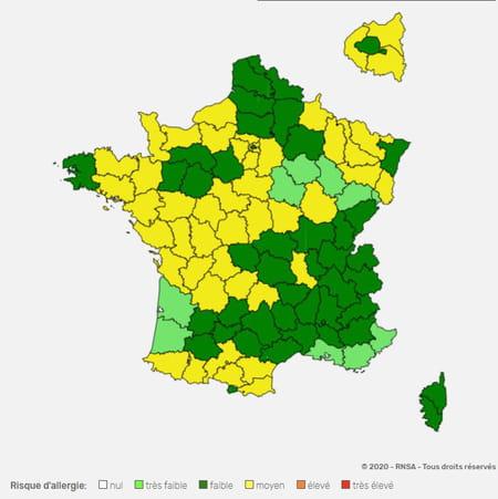 CARTE DES POLLENS FRANCE JUILLET 2020