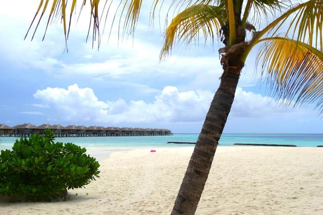 De sublimes plages
