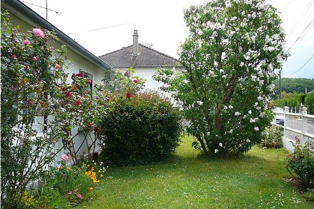 Le jardin c t rue - Deco jardin nice rue barla versailles ...