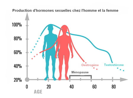 taux hormone sexuelle homme femme