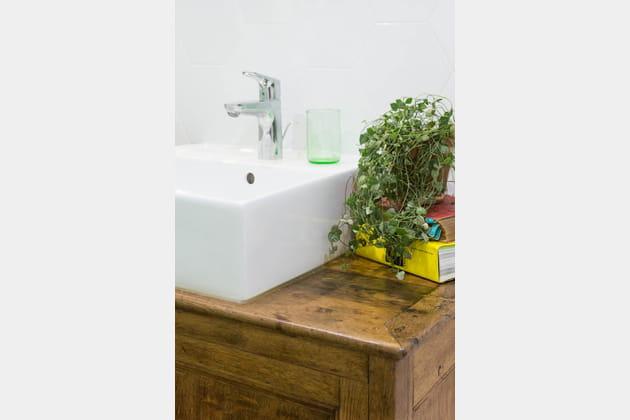 Une plante tombante sur le meuble vasque de la salle de bains