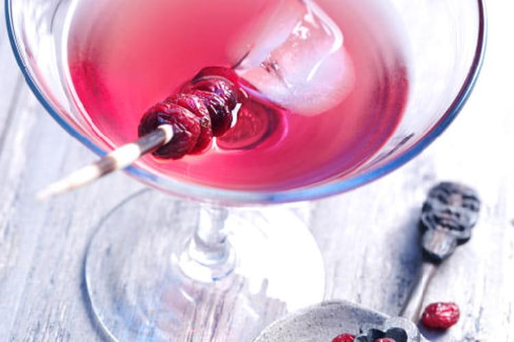 Cocktail aux Cranberries et au vermouth