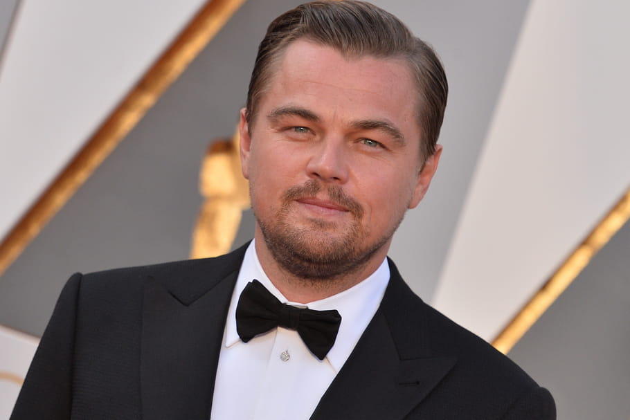 Attentat de Nice : Leonardo DiCaprio va faire un don aux victimes