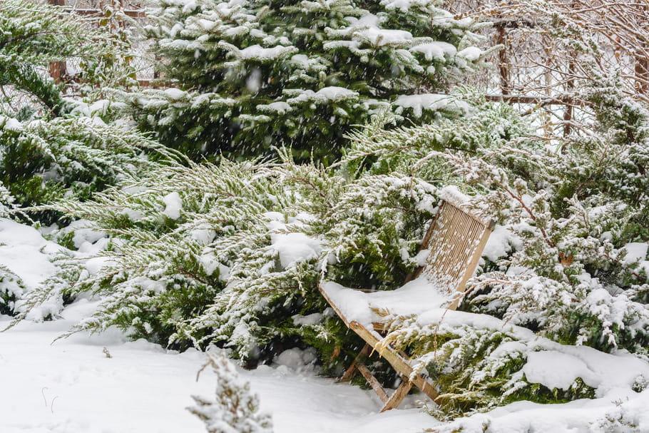 10 id es pour un joli jardin en hiver for Jardin anglais en hiver