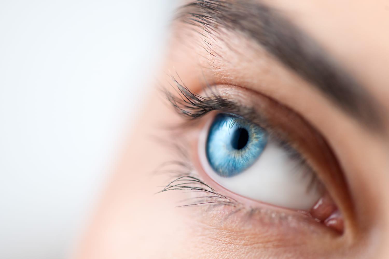 Fond d'oeil: quand le faire, pourquoi, normal ou pas?