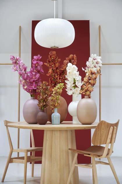 Des fleurs séparées par couleurs