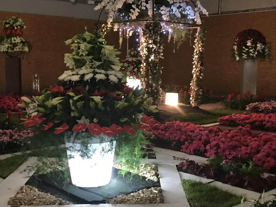 prix-d-honneur-Far-East-Pakistan-floralies-de-nantes