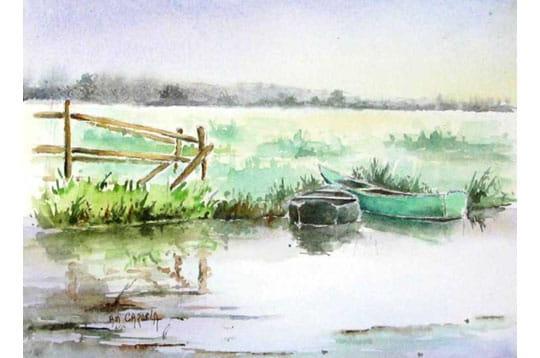 Barques en Brière